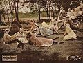 Anne of Green Gables 1919-scene2.jpg