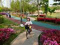 Ansan Lake Park Spring 2015 04.JPG