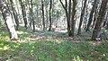 Apriltzi, Bulgaria - panoramio (5).jpg