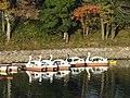 Asahi River (Okayama City) - DSC01779.JPG