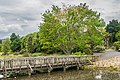 Auckland Botanic Gardens 46.jpg