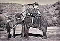 Ausstellung 'Der Zeit voraus - Drei Frauen auf eigenen Wegen' - Stadtmuseum Rapperswil - Martha Burkhardt (rechts) und ihre Freundin Meta Kirchner auf einem Elefanten 1911, Reise durch Indien 2015-09-05 16-26-51.JPG