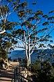 Australia - Part 3 (27519366465).jpg