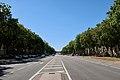 Avenue de Paris, Versailles 9.jpg