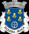 BRG-sequeira.png