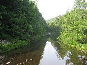 Babb Creek, east from PA 287.JPG