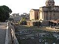 Back view of Curia Iulia and Basilica Aemilia (Rome).jpg