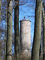 Bad wildungen aussichtsturm homberg ds wv 04 2010.jpg