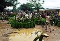 Banana Market at Darangiri, Goalpara.jpg