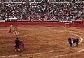 Banderillas time - Plaza Mexico.jpg