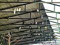 Bangabandhu Sheikh Mujib Safari Park 17.jpg