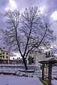 Bansko winter - panoramio (4).jpg