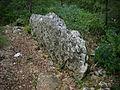 Barjac - dolmen n°2.JPG