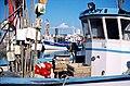 Bateaux de pêche côtière.jpg