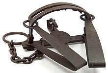 Uma armadilha de aço de mola dupla feita em meados do século XIX