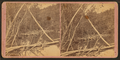 Beaver dams of Bear River near its source, from Robert N. Dennis collection of stereoscopic views.png