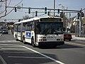 Bee Line 532 - Flickr - njt4148.jpg