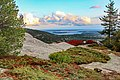 Beech Cliff Loop (3ce04339-fbb6-4e21-ad26-cefed00e4eaf).jpg