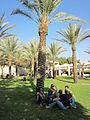 Ben Gurion University of the Negev - IsraelMFA 14.jpg