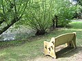 Bench and Pond, Headcorn - geograph.org.uk - 1420727.jpg
