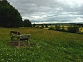 Bench on the lower slopes of Grove Hill - geograph.org.uk - 889000.jpg