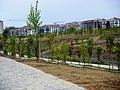 Beylikdüzü Yeşil Vadi-Yaşam Vadisi Botanik Şehir Parkı Çalışmaları Devam Ediyor, Nisan 2014 - panoramio (1).jpg