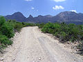 Big Bend National Park PB112595.jpg