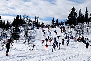 Birkebeinerrennet - Birkebeinerrennet 2010