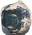 Black precious opal (Tertiary; Wollo Province, Ethiopia) 2 (48163622072).jpg