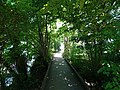Boardwalk @ Marais de l'Enfer @ Lake Annecy @ Saint-Jorioz (50488255236).jpg
