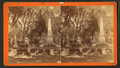 Bonaventure Cemetery, from Robert N. Dennis collection of stereoscopic views 8.png