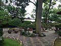 Bonsai Garden in Zhuozhengyuan Garden 6.JPG