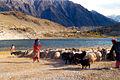 Borath Lake Hunza.jpg