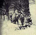 Borci 14. divizije nekje na Štajerskem.jpg