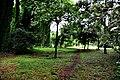 Botanic garden limbe13.jpg
