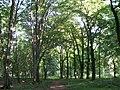 Botanical garden in zugdidi(16).jpg
