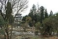 Botanischen Garten der Universität Zürich - panoramio (8).jpg