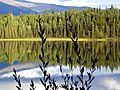 Boya Lake Provincial Park^^ In the Cassiars mountains ^^ Northern BC^^Ici hurlent les loups le soir ^^Real Wildernes area - panoramio.jpg