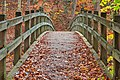 Bridge to Fall - HDR (22917712301).jpg