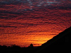 Image: Bright red clouds at sun rise.JPG (row: 3 column: 15 )