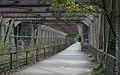 Bristol MMB «Z5 Ashton Avenue Bridge.jpg