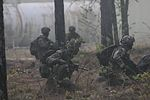 British 16 Air Assault Brigade mission Essential During Combine Joint Operational Access Exercise 15-01 150418-A-ZK259-582.jpg