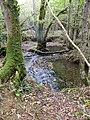 Brook running through Berrydown Wood - Oct 2014 - panoramio.jpg