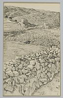 Brooklyn Museum - Vineyards with Their Watch Towers - James Tissot.jpg