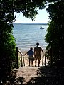 Brownsea Island, emerging at the beach down Terrier Steps - geograph.org.uk - 1446031.jpg