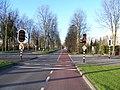 Buitenhofdreef - panoramio.jpg