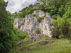 Burglesauer Wand-20200517-RM-155806.jpg