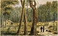 Bush Farm Near Chatham, ca. 1838.jpg