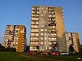 Bytom Miechowice - Stolarzowicka widok na osiedle - panoramio.jpg