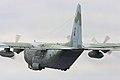 C130 Hercules - RIAT 2008 (2808613059).jpg